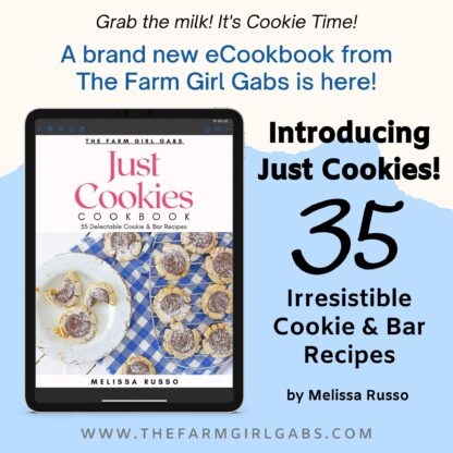 Just cookies is a collection of 35 delicious cookies and bar recipes by Melissa Russo. These cherished recipes have been passed down over the years. In this eBook, you will find the classics like Chocolate Chip and some newer cookie and bar recipes as well. So grab a glass of milk and start baking.