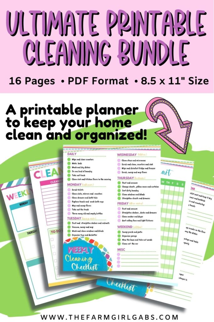 Home Organization cleaning binder